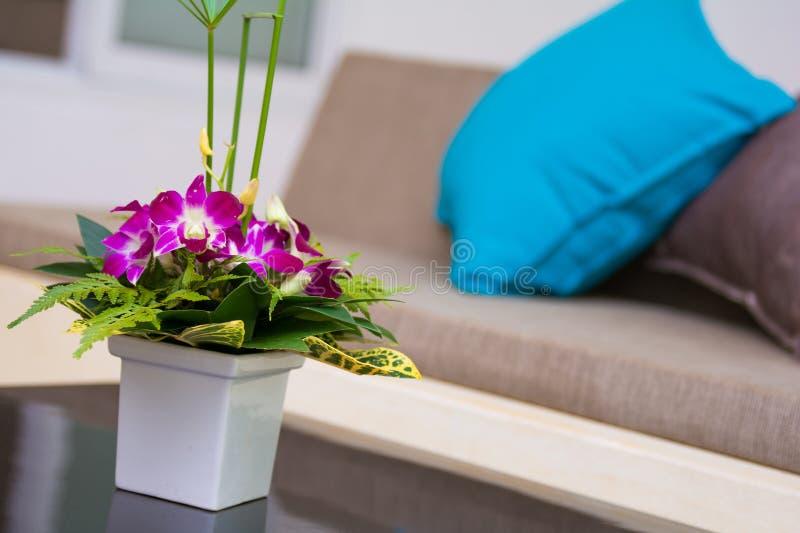 白色花瓶花在客厅, 库存照片