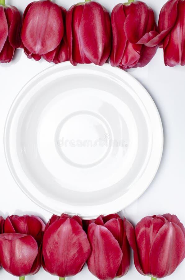 白色茶碟在白色背景站立在多彩多姿的郁金香旁边 库存图片
