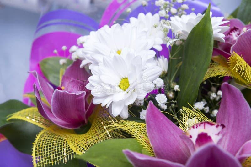 白色菊花和桃红色兰花,花花束  免版税库存照片