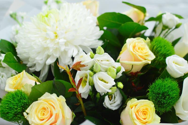 白色菊花和玫瑰花背景  免版税库存照片