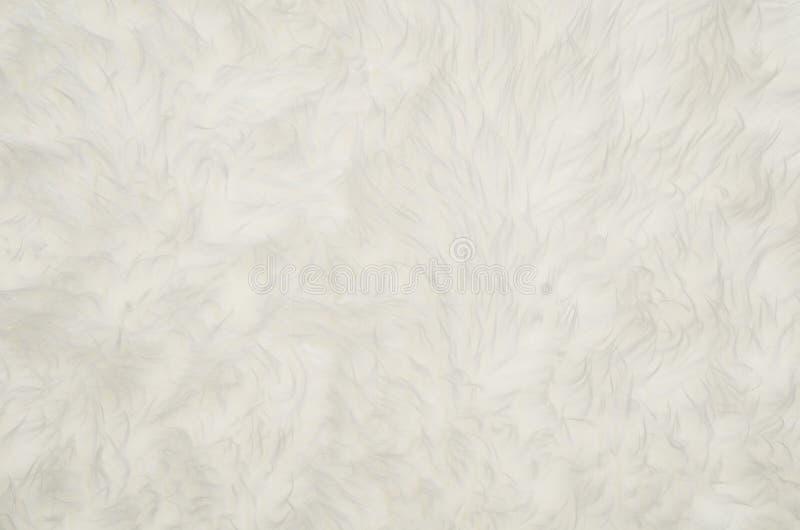 白色蓬松毛皮纹理或样式背景特写镜头  库存照片