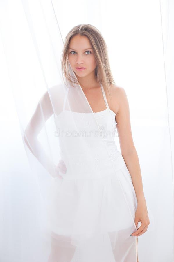 白色薄纱 免版税库存照片