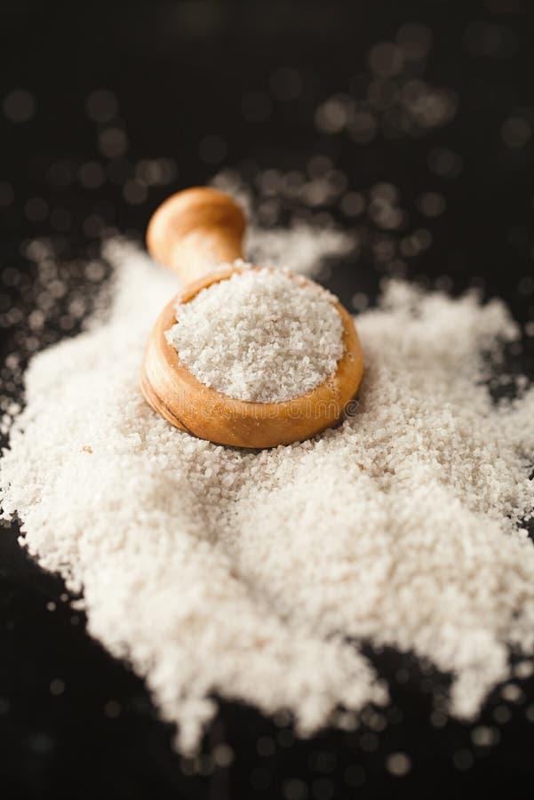 白色蘑菇块菌海盐 免版税库存照片