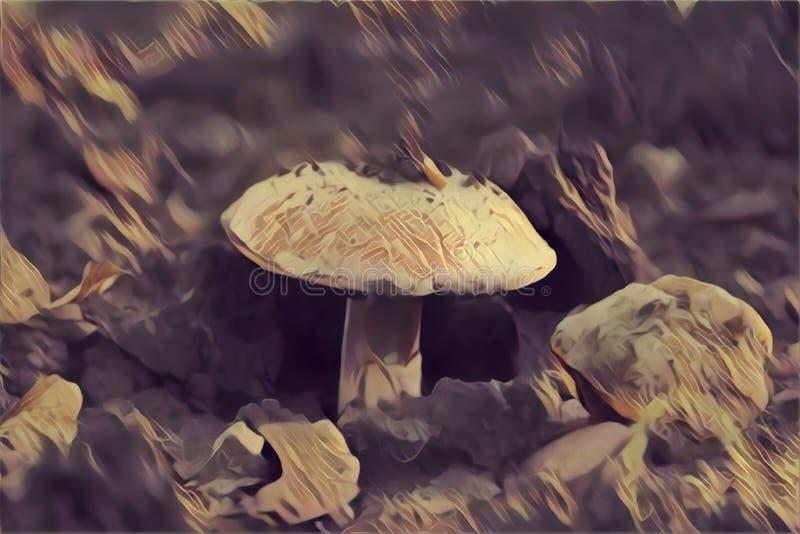 白色蘑菇增长 抽象派例证 库存例证