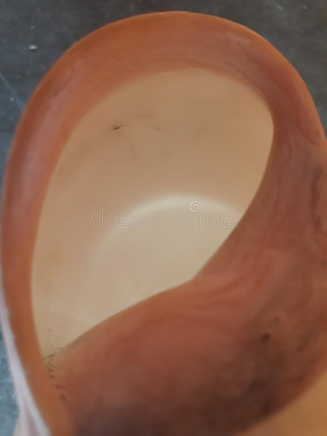 白色蜗牛房子进口 免版税库存图片
