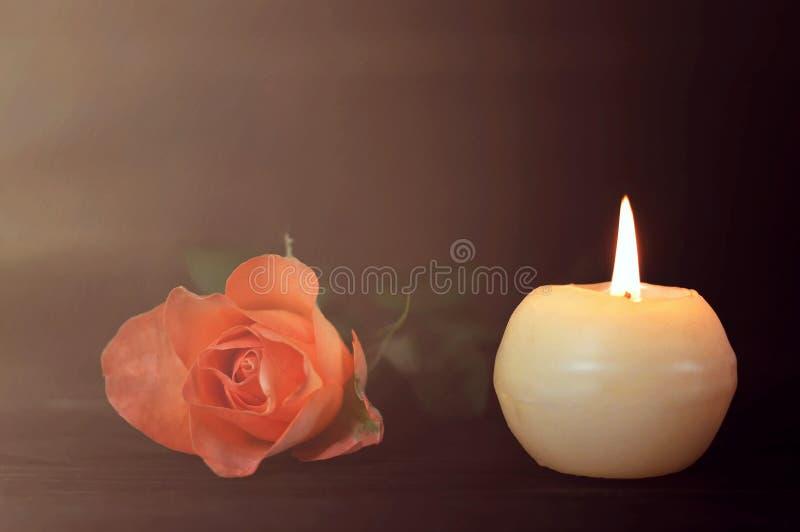 白色蜡烛和玫瑰在黑暗的背景 免版税图库摄影
