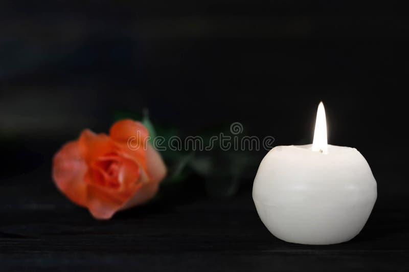 白色蜡烛和玫瑰 免版税库存图片