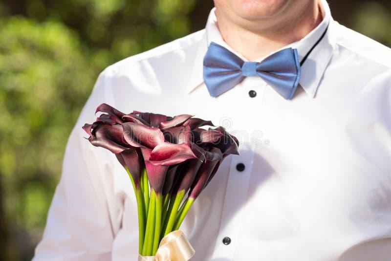 白色衬衣的绅士有一只蝴蝶的,与颜色在手上 免版税库存照片