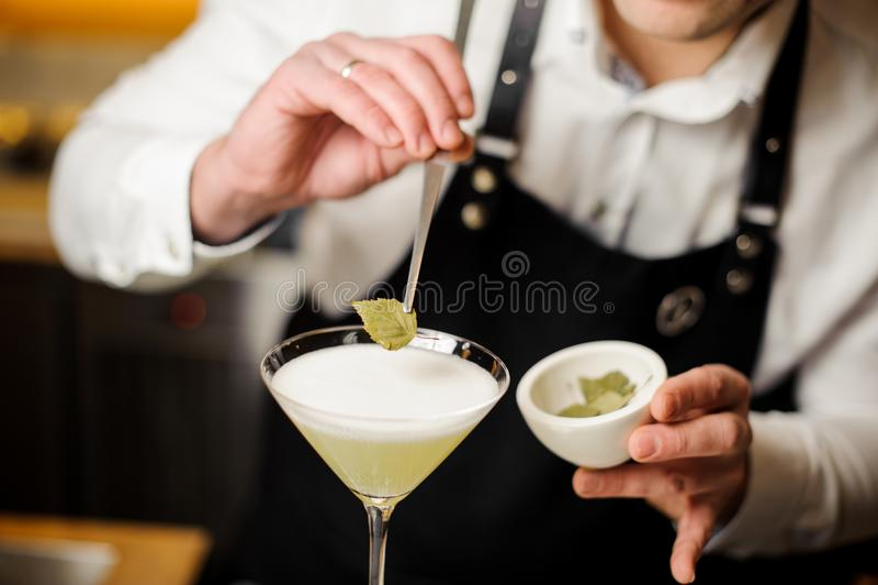 白色衬衣的装饰与桦树叶子的侍酒者和围裙一个鸡尾酒 免版税库存图片