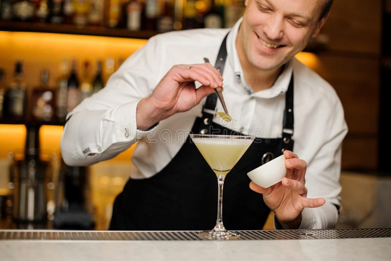 白色衬衣的装饰与桦树叶子的微笑的男服务员和围裙一个鸡尾酒 库存图片