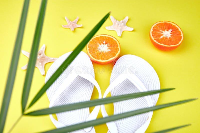 白色触发器、橙色果子、海星和棕榈 免版税库存图片