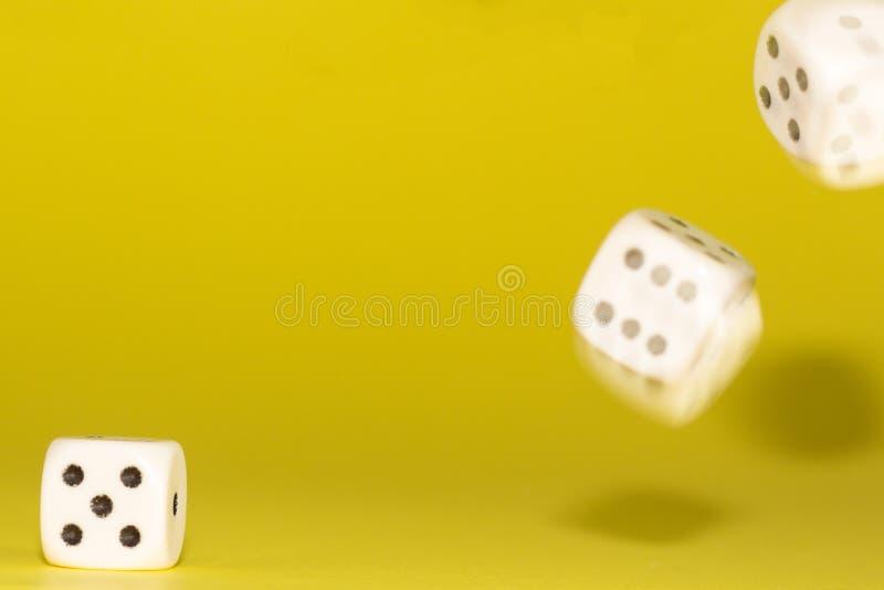 白色赌博在桃红色背景切成小方块 胜利机会,幸运 平的位置,文本的地方 顶视图 特写镜头 概念赌博 库存图片