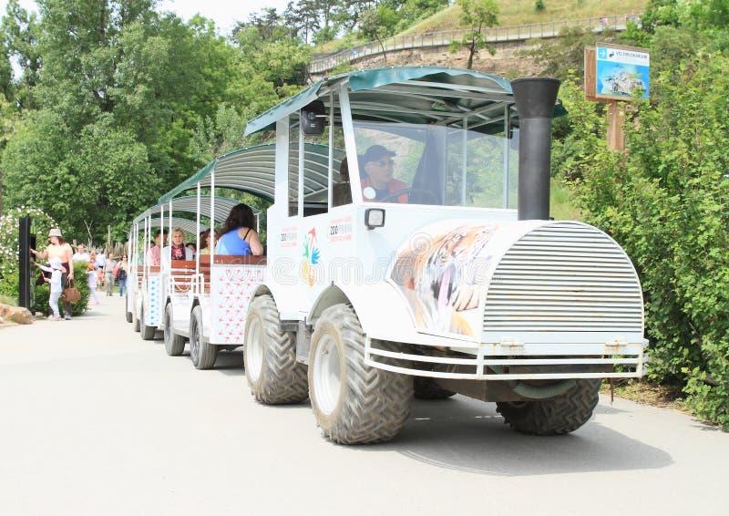 白色运输火车在布拉格动物园里 免版税图库摄影
