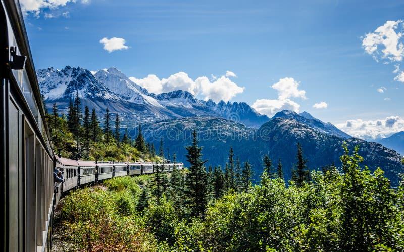 白色通行证和育空路线铁路在阿拉斯加 免版税库存照片
