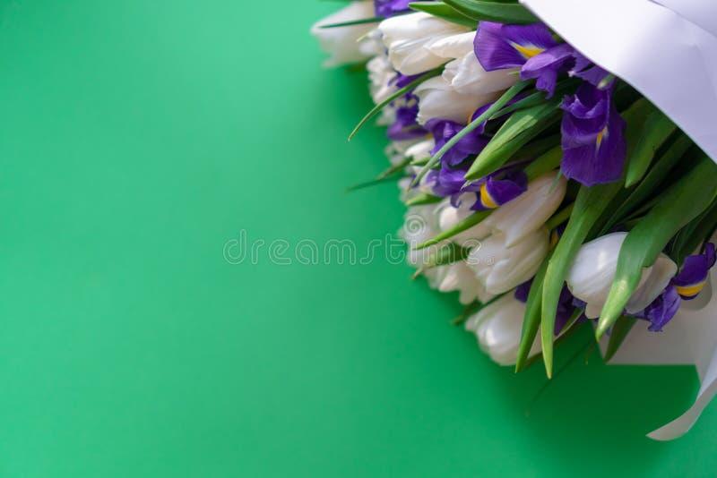 白色郁金香和紫色虹膜在绿色背景 库存图片