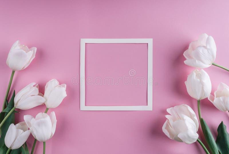白色郁金香花和纸片在浅粉红色的背景的 圣徒情人节框架或背景 库存图片