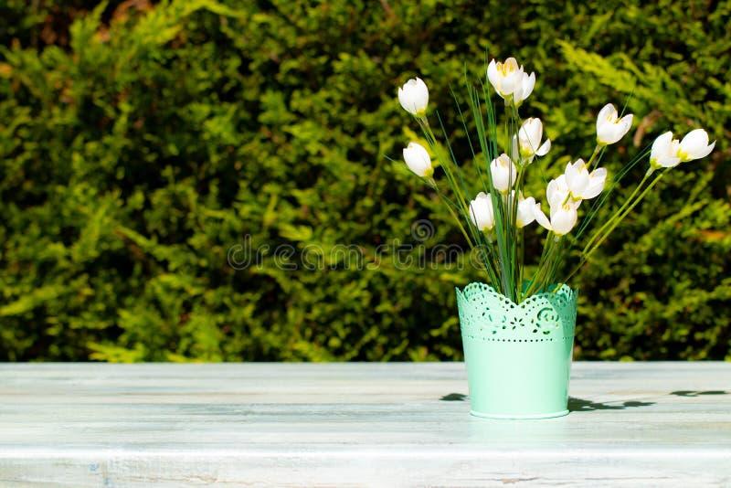 白色野花的装饰构成在土气明亮的wo的 免版税库存图片