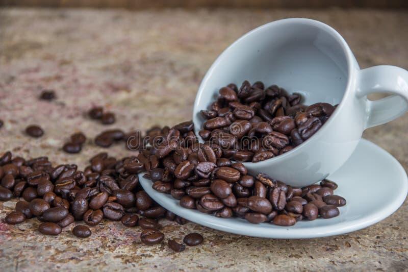 从白色陶瓷杯子的溢出的咖啡豆在木ba 免版税图库摄影