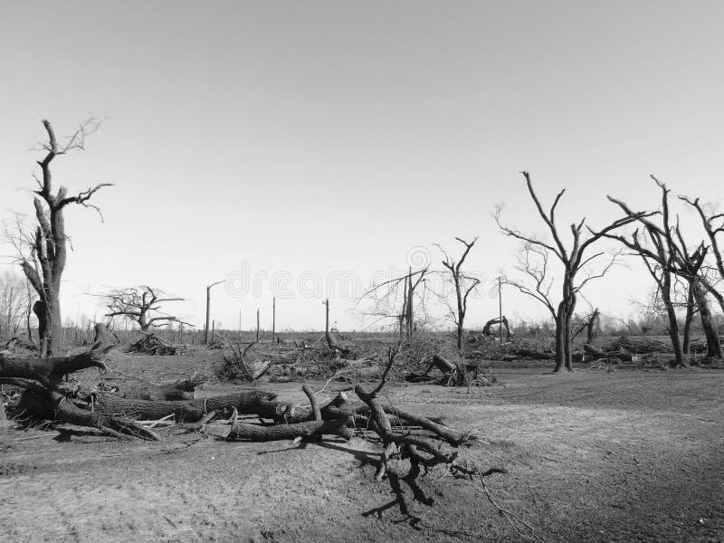 黑&白色风暴损伤 免版税库存图片