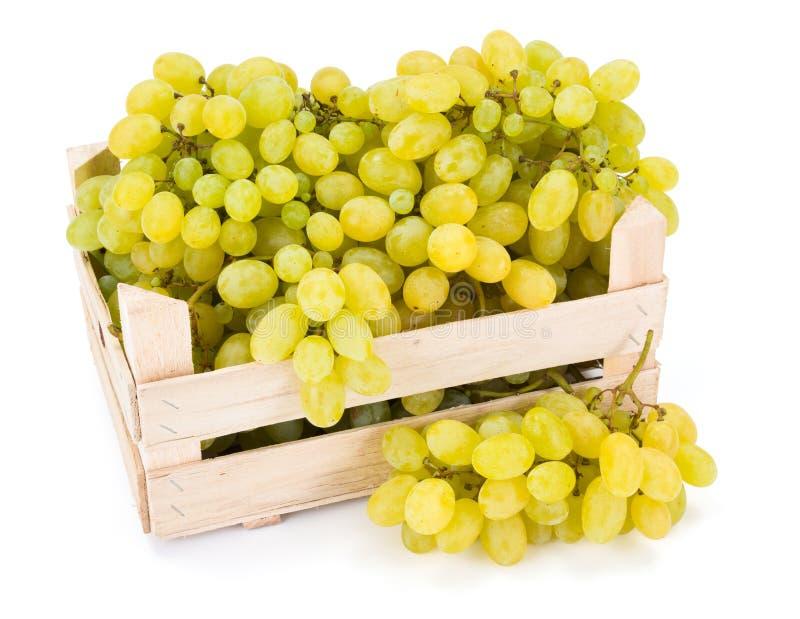 白色食用葡萄(葡萄属)在木板箱 库存图片