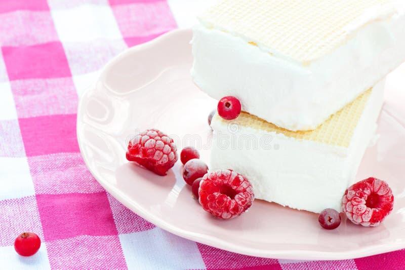 白色香草冰淇凌用奶蛋烘饼和莓果 特写镜头 免版税库存图片