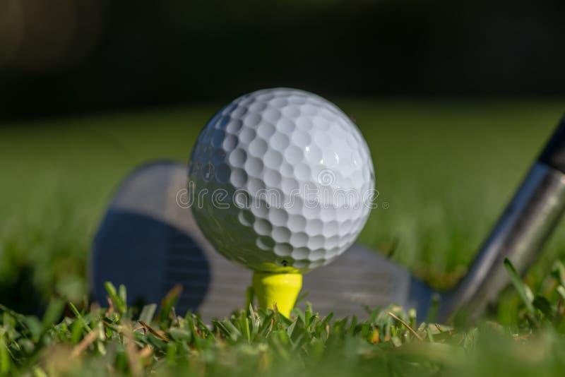白色高尔夫球在一个黄色发球区域准备了与在它后的俱乐部面孔和有软的绿色背景 免版税库存照片