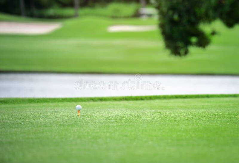 白色高尔夫球用在绿草的发球区域桔子 库存照片
