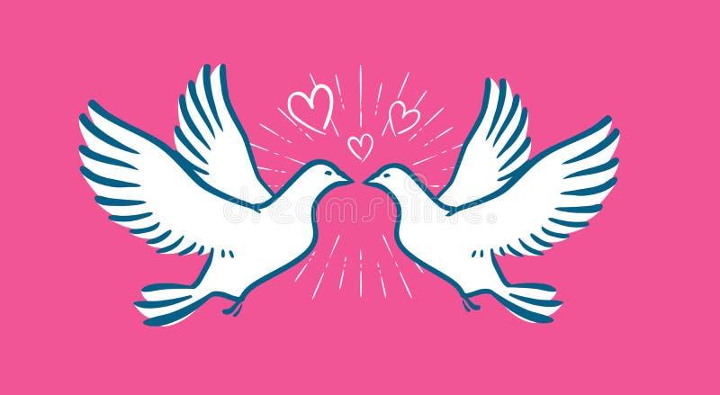 白色鸠飞行 婚礼,爱标志 情人节横幅 皇族释放例证