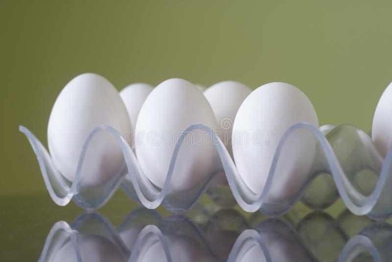 白色鸡鸡蛋 库存图片