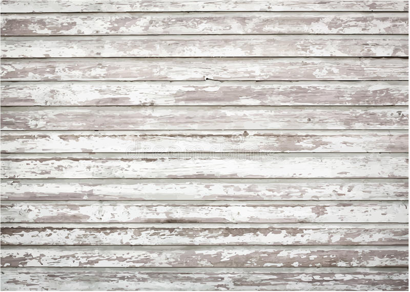 白色,灰色难看的东西木墙壁纹理,老 向量例证