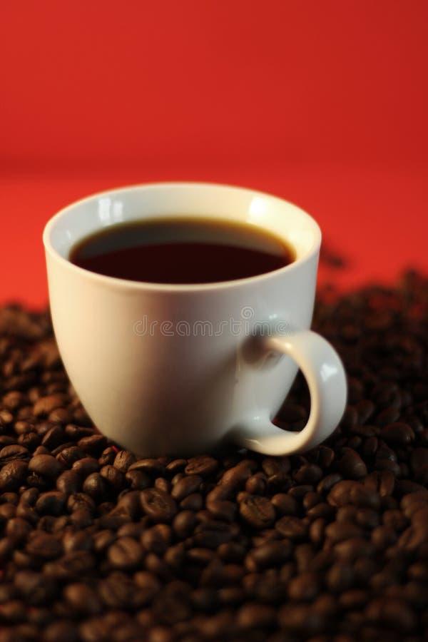 白色,陶瓷咖啡杯咖啡豆,红色背景 免版税库存照片