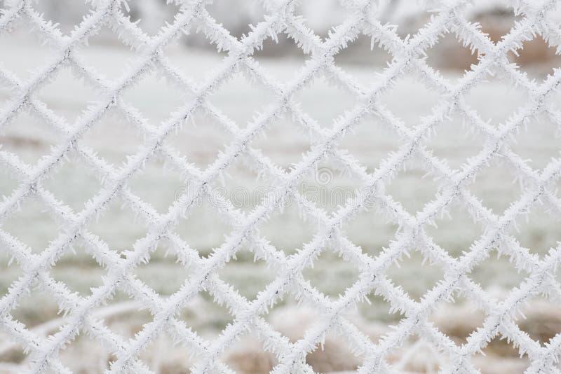 白色结冰的雪剥落背景 库存图片