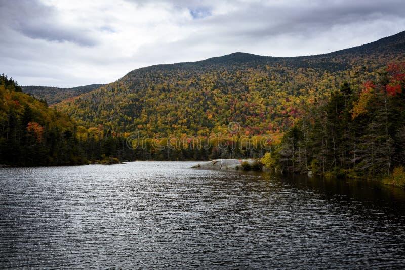 白色moutains的海狸池塘在秋天期间 免版税库存图片