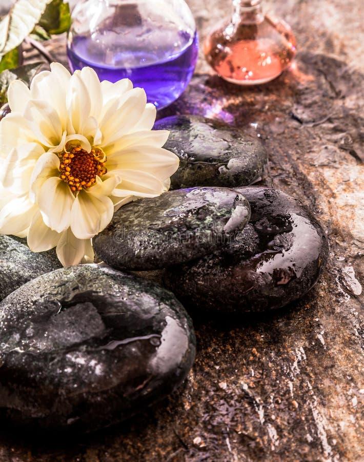 白花和油与光滑的湿河岩石 库存图片
