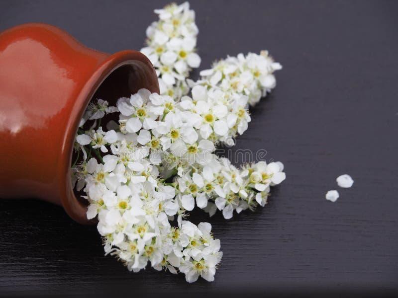 白花花束在一个陶瓷花瓶的在一张木桌上 库存照片