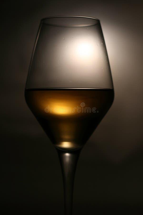 白葡萄酒静物画 免版税库存图片
