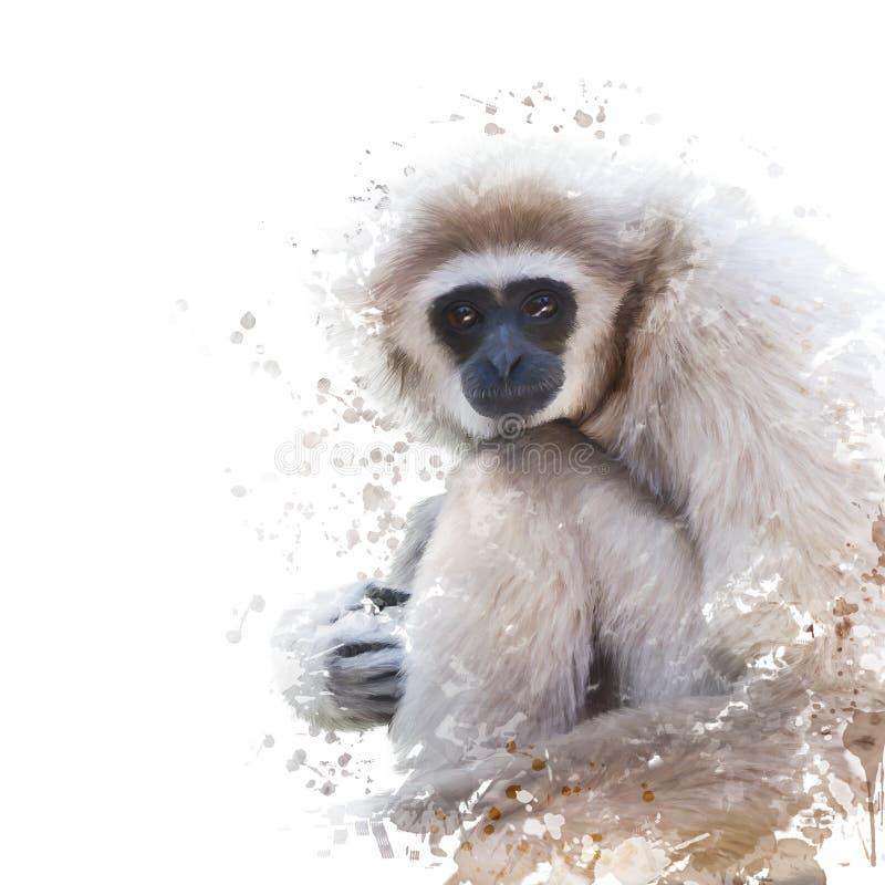 白被递的长臂猿水彩画象  库存例证