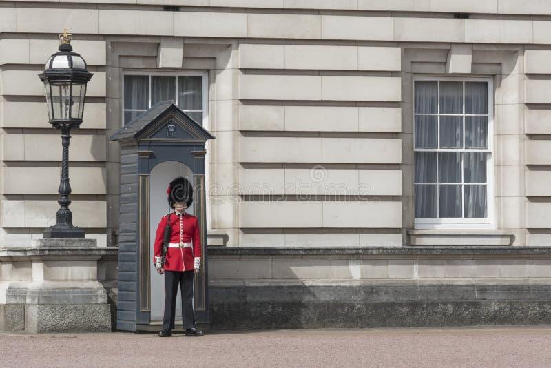 白金汉宫的卫兵在伦敦 库存照片