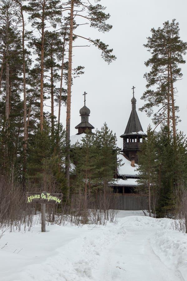 白雪覆盖的俄罗斯冬季森林 库存照片