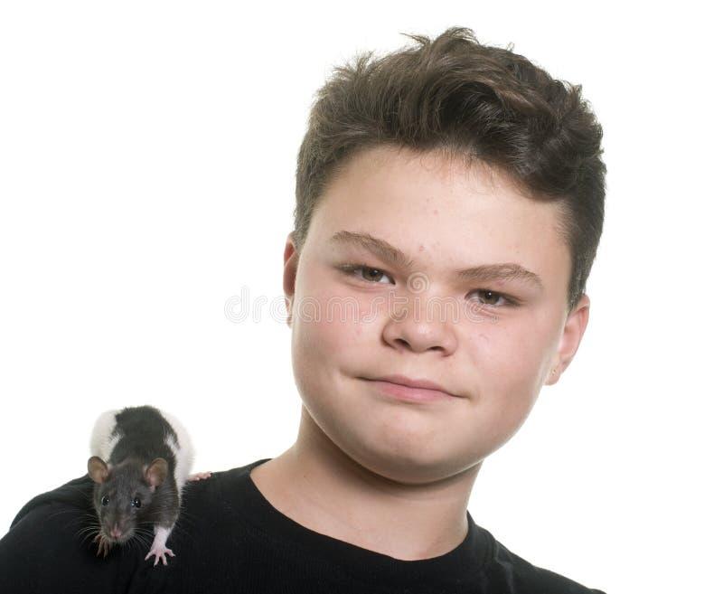 黑白鼠和青少年 免版税图库摄影