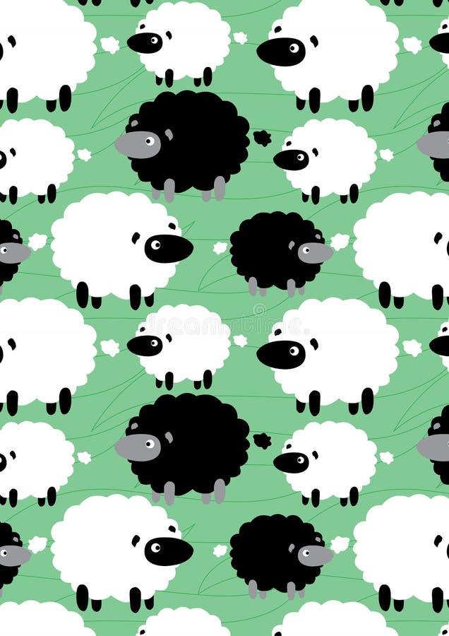 黑白绵羊。 库存例证