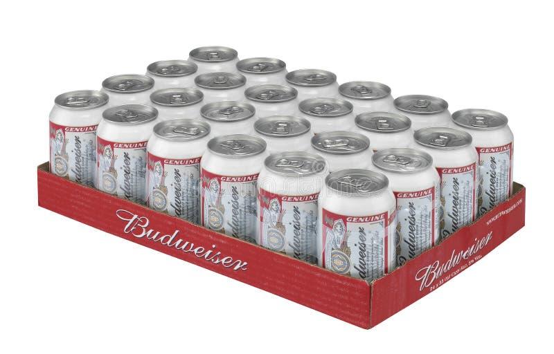 百威在盘子的啤酒罐 库存照片