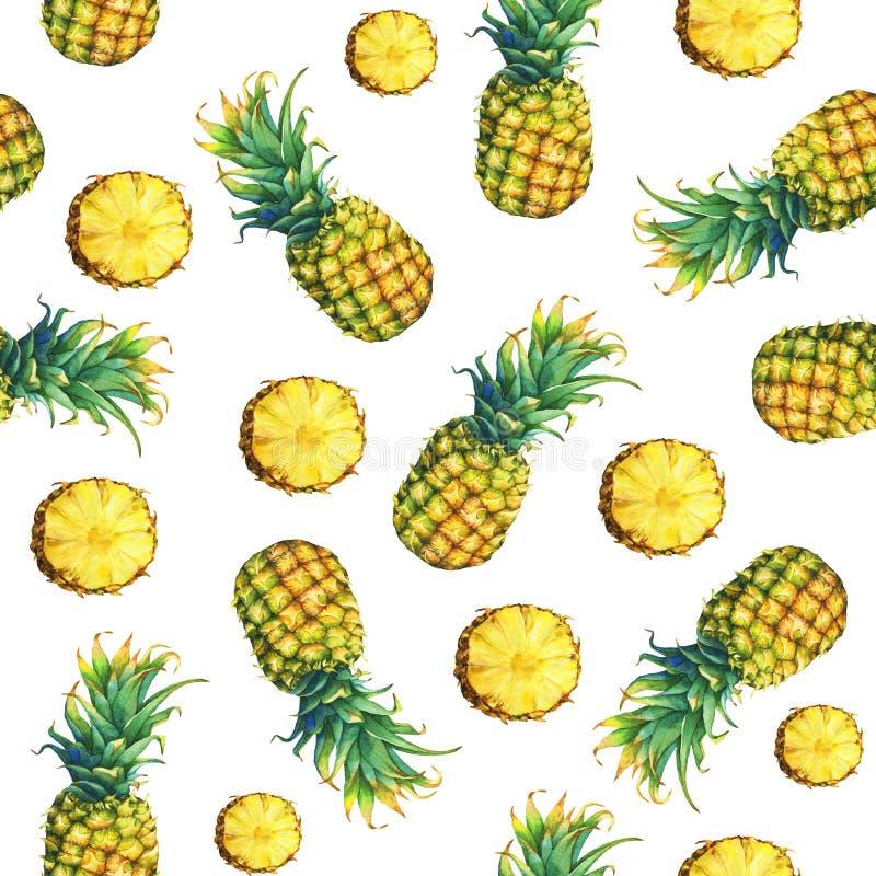 的与绿色叶子的新鲜水果菠萝的无缝的样式 皇族释放例证