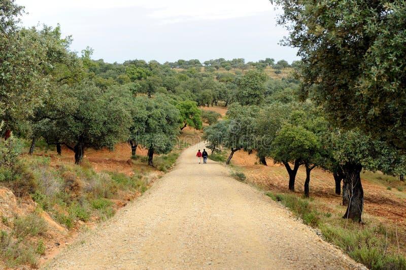的两个香客通过de拉普拉塔, El贝罗卡尔在Almaden de拉普拉塔,塞维利亚省,安大路西亚,西班牙 库存图片