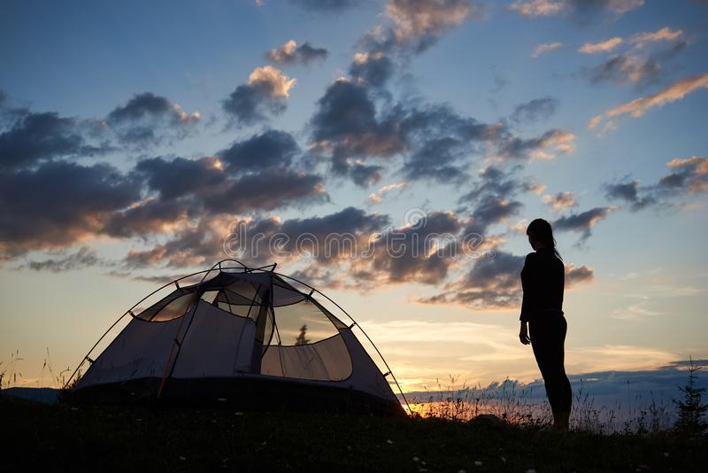 的剪影女孩站立在顶面山近野营的后面观点在与野花的草在破晓 图库摄影