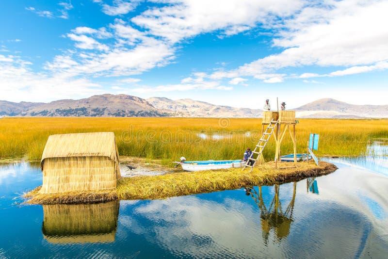 的喀喀湖的普诺省,秘鲁,南美浮动海岛,盖在家。种植Khili的密集的根交织 免版税库存图片