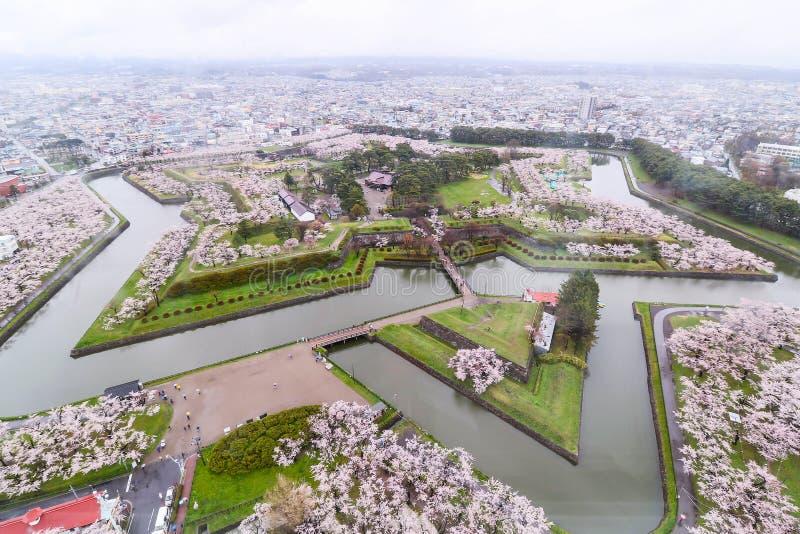 的大厦星的Goryokaku公园顶视图保护c 免版税图库摄影