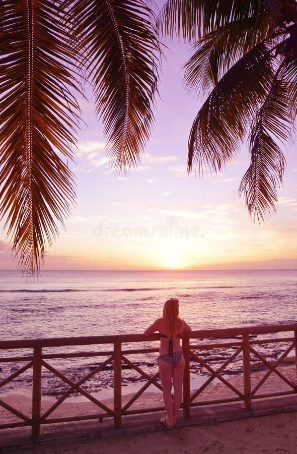 的年轻女人站立在可可椰子树下和观看在印度洋的后面观点日落 免版税库存图片