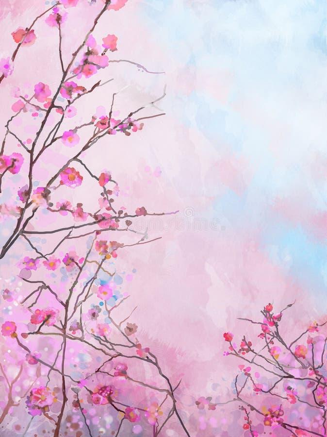 绘的桃红色日本樱桃佐仓花卉春天开花背景 皇族释放例证