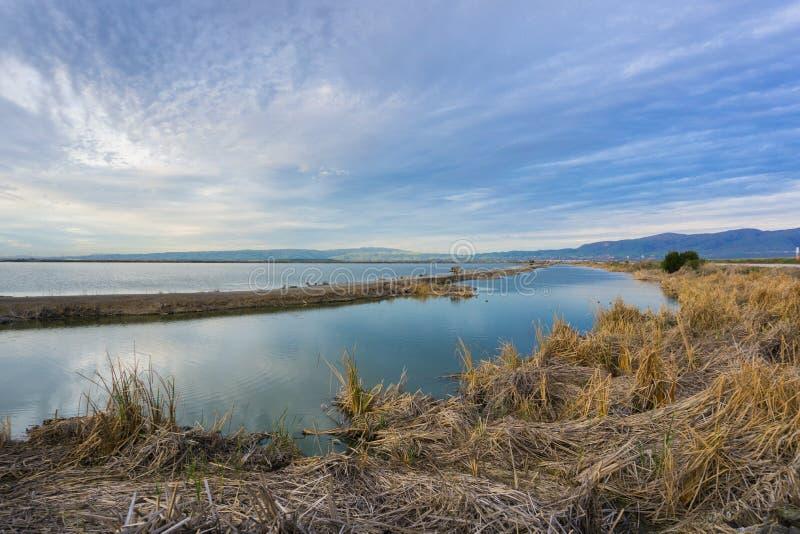 的池塘的日落视图南旧金山湾区,使命峰顶在背景中,森尼韦尔,加利福尼亚堤坝  免版税图库摄影